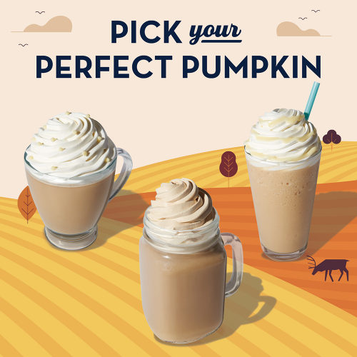 Pick Your Perfect Pumpkin Thumbnail